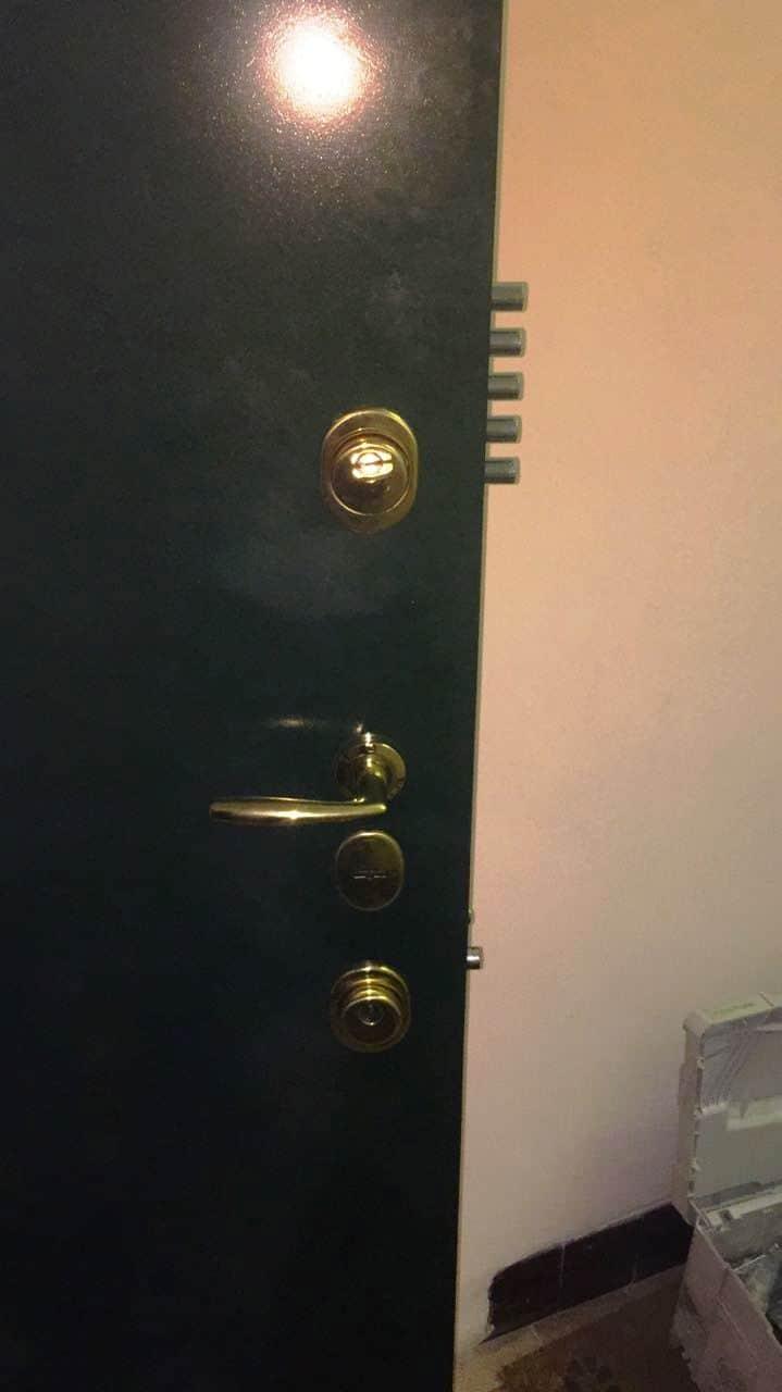Металлическая дверь, моноблок Mottura (Моттура) - снизу, замок Mottura (Моттура) и личинка Cisa (Чиза) - сверху, дверная ручка Hoppe (Хоппе), врезная броня Disec (Дисек)